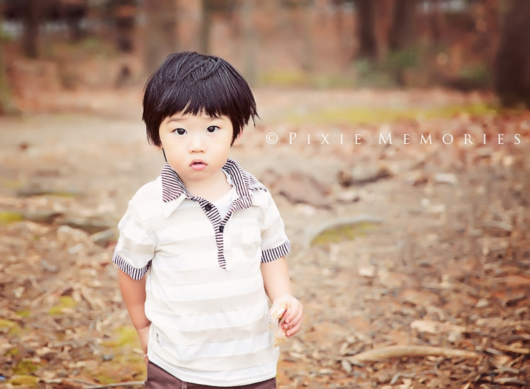 Boy in Woods three years old natural light burke Va